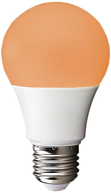 Light Bulb Orange